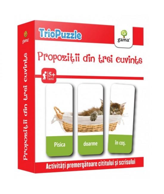 Propoziții din trei cuvinte  - Triopuzzle