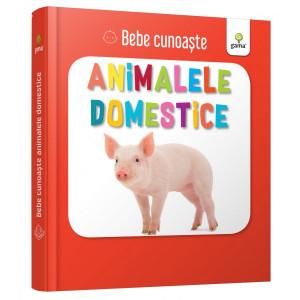 Animalele domestice - Bebe cunoaște