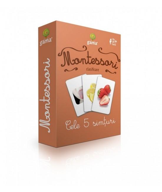 Cele 5 simțuri - Cărți de joc bilingve Montessori - Clasificare