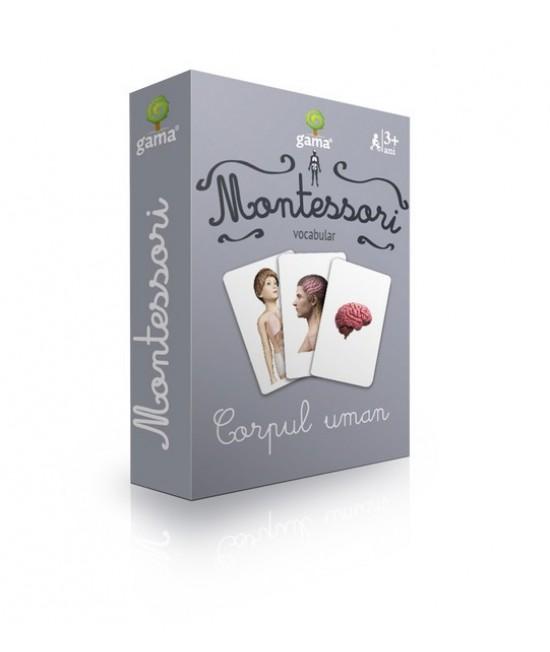 Corpul uman - Cărți de joc bilingve Montessori - Vocabular