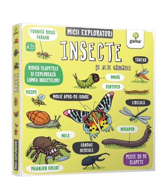 Insecte și alte gângănii - Micii Exploratori