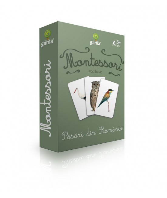 Păsări din România - Cărți de joc bilingve Montessori - Vocabular