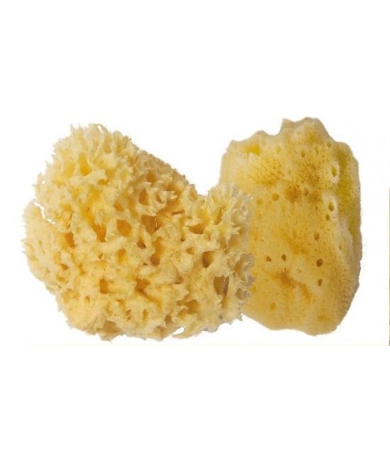 Burete de baie natural mic Croll & Denecke pentru baia bebelușilor